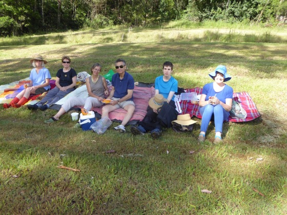 Picnic on the hill